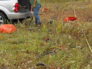 Geophysical Services MASW Survey